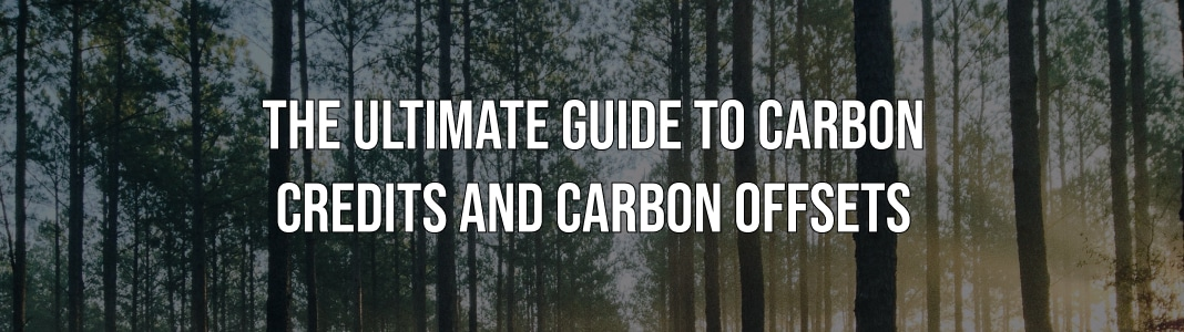 ULTIMATE GUIDE TO CARBON CREDITS AND CARBON OFFSETS