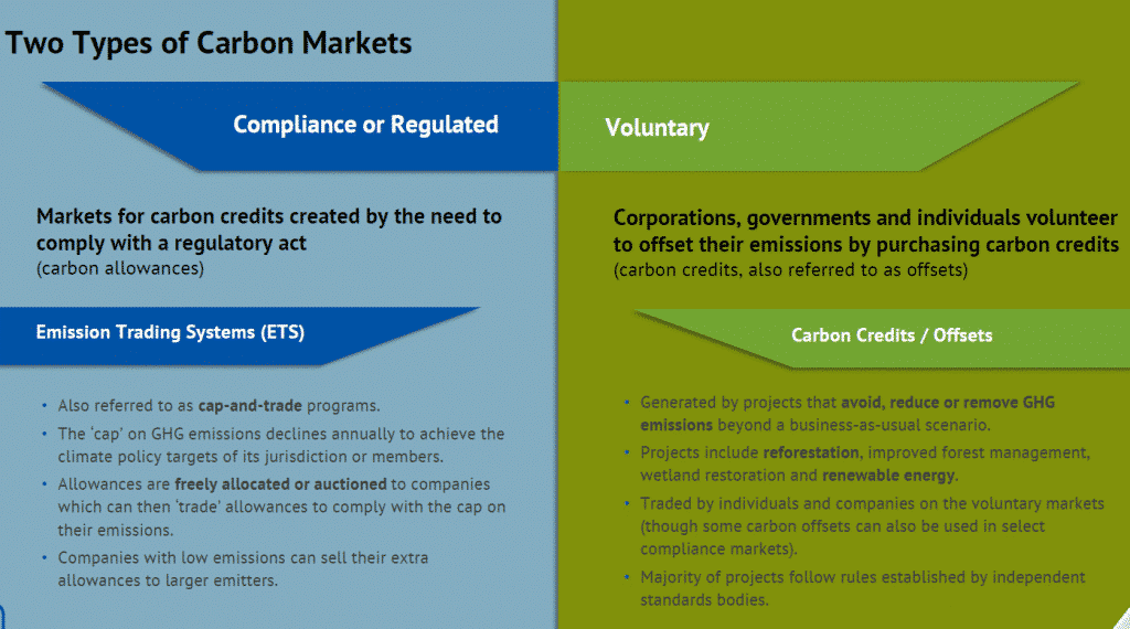 Two types of carbon market